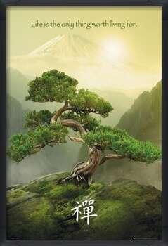Framed Poster Zen